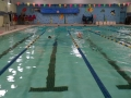 2012swimathon3