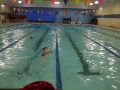 2013swimathon3